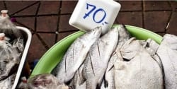 """Teach a man to fish…"""" The case for empowering low-income households to shop efficient"""