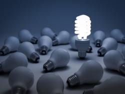 New Zealand's Businesses Opt for Energy Efficiency