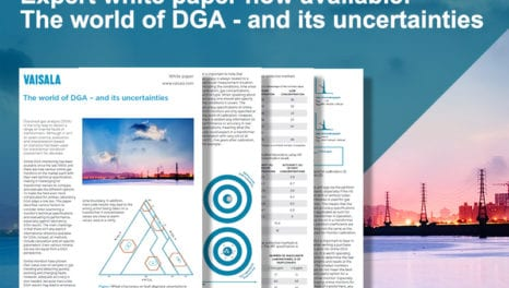 Expert white paper: The world of DGA monitoring and its uncertainties