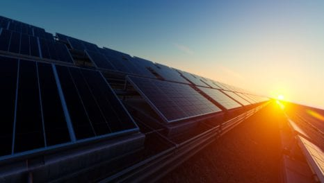 Cadent launches Norfolk solar farm to power its own sites