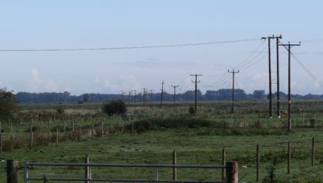 Power lines to be removed at South Walsham Marshes