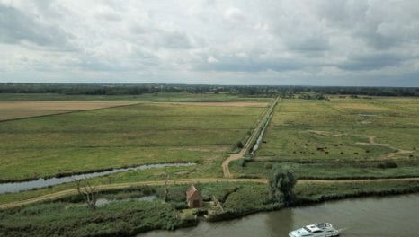 UKPN line removal rejuvenates Norfolk marsh
