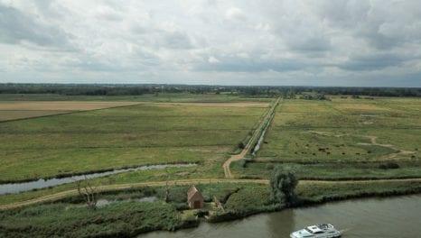 UKPN line removal rejuvenates Norfolk marsh