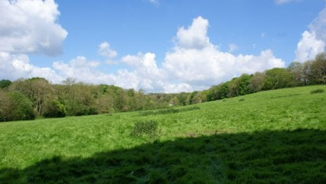 UKPN works with Kent Downs AONB to underground power lines