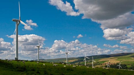 Carbon Trust launches new initiative to transform energy system