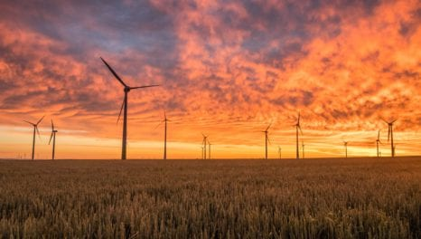 Government abandons opposition to subsidising new onshore windfarms