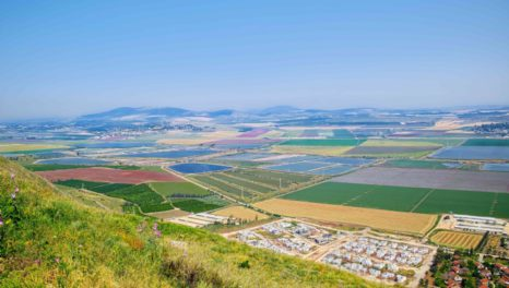 IDE wins brackish water desal plant contract in Israel